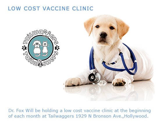 low cost vaccine